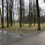 Park Miejski im. Małachowskich w Końskich - zdjęcie nr 1