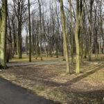 Park Miejski im. Małachowskich w Końskich - zdjęcie nr 13