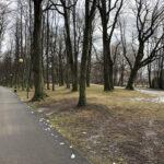 Park Miejski im. Małachowskich w Końskich - zdjęcie nr 14