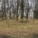Park Miejski im. Małachowskich w Końskich - zdjęcie nr 15
