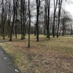 Park Miejski im. Małachowskich w Końskich - zdjęcie nr 17