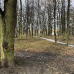 Park Miejski im. Małachowskich w Końskich - zdjęcie nr 18