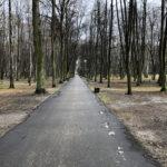Park Miejski im. Małachowskich w Końskich - zdjęcie nr 19