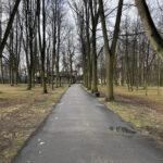 Park Miejski im. Małachowskich w Końskich - zdjęcie nr 20