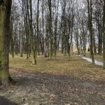 Park Miejski im. Małachowskich w Końskich - zdjęcie nr 21