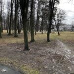 Park Miejski im. Małachowskich w Końskich - zdjęcie nr 22