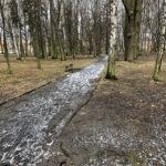 Park Miejski im. Małachowskich w Końskich - zdjęcie nr 23