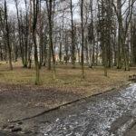 Park Miejski im. Małachowskich w Końskich - zdjęcie nr 24