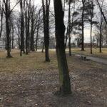 Park Miejski im. Małachowskich w Końskich - zdjęcie nr 26