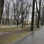 Park Miejski im. Małachowskich w Końskich - zdjęcie nr 27
