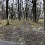 Park Miejski im. Małachowskich w Końskich - zdjęcie nr 28