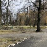 Park Miejski im. Małachowskich w Końskich - zdjęcie nr 3
