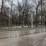 Park Miejski im. Małachowskich w Końskich - zdjęcie nr 31