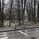 Park Miejski im. Małachowskich w Końskich - zdjęcie nr 32