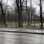 Park Miejski im. Małachowskich w Końskich - zdjęcie nr 34