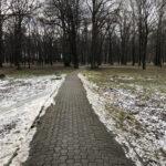 Park Miejski im. Małachowskich w Końskich - zdjęcie nr 35
