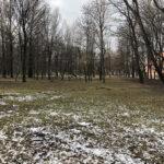Park Miejski im. Małachowskich w Końskich - zdjęcie nr 36