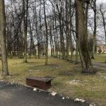 Park Miejski im. Małachowskich w Końskich - zdjęcie nr 4
