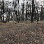 Park Miejski im. Małachowskich w Końskich - zdjęcie nr 40