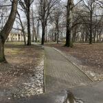 Park Miejski im. Małachowskich w Końskich - zdjęcie nr 41