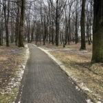 Park Miejski im. Małachowskich w Końskich - zdjęcie nr 45