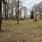 Park Miejski im. Małachowskich w Końskich - zdjęcie nr 47