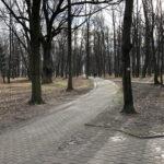 Park Miejski im. Małachowskich w Końskich - zdjęcie nr 50