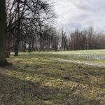 Park Miejski im. Małachowskich w Końskich - zdjęcie nr 53
