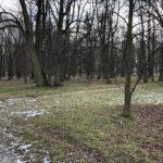 Park Miejski im. Małachowskich w Końskich - zdjęcie nr 55