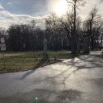Park Miejski im. Małachowskich w Końskich - zdjęcie nr 57