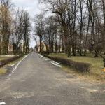 Park Miejski im. Małachowskich w Końskich - zdjęcie nr 6
