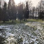 Park Miejski im. Małachowskich w Końskich - zdjęcie nr 60
