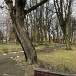 Park Miejski im. Małachowskich w Końskich - zdjęcie nr 9