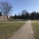 Konecki park - 16 marca 2020 roku - zdjęcie nr 10