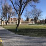 Konecki park - 16 marca 2020 roku - zdjęcie nr 11