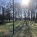 Konecki park - 16 marca 2020 roku - zdjęcie nr 13