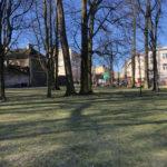Konecki park - 16 marca 2020 roku - zdjęcie nr 14