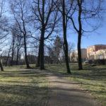 Konecki park - 16 marca 2020 roku - zdjęcie nr 16