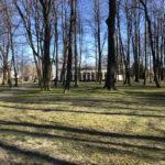 Konecki park - 16 marca 2020 roku - zdjęcie nr 18