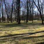 Konecki park - 16 marca 2020 roku - zdjęcie nr 19