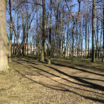Konecki park - 16 marca 2020 roku - zdjęcie nr 24