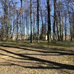 Konecki park - 16 marca 2020 roku - zdjęcie nr 26
