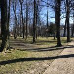 Konecki park - 16 marca 2020 roku - zdjęcie nr 27
