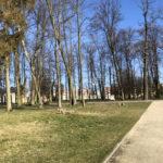 Konecki park - 16 marca 2020 roku - zdjęcie nr 29