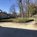 Konecki park - 16 marca 2020 roku - zdjęcie nr 31