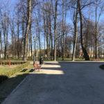 Konecki park - 16 marca 2020 roku - zdjęcie nr 33