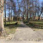Konecki park - 16 marca 2020 roku - zdjęcie nr 37