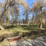 Konecki park - 16 marca 2020 roku - zdjęcie nr 41