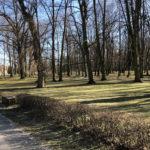 Konecki park - 16 marca 2020 roku - zdjęcie nr 42