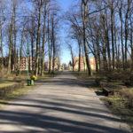 Konecki park - 16 marca 2020 roku - zdjęcie nr 44